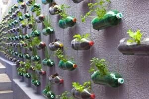 peturi reciclate, natura salvata